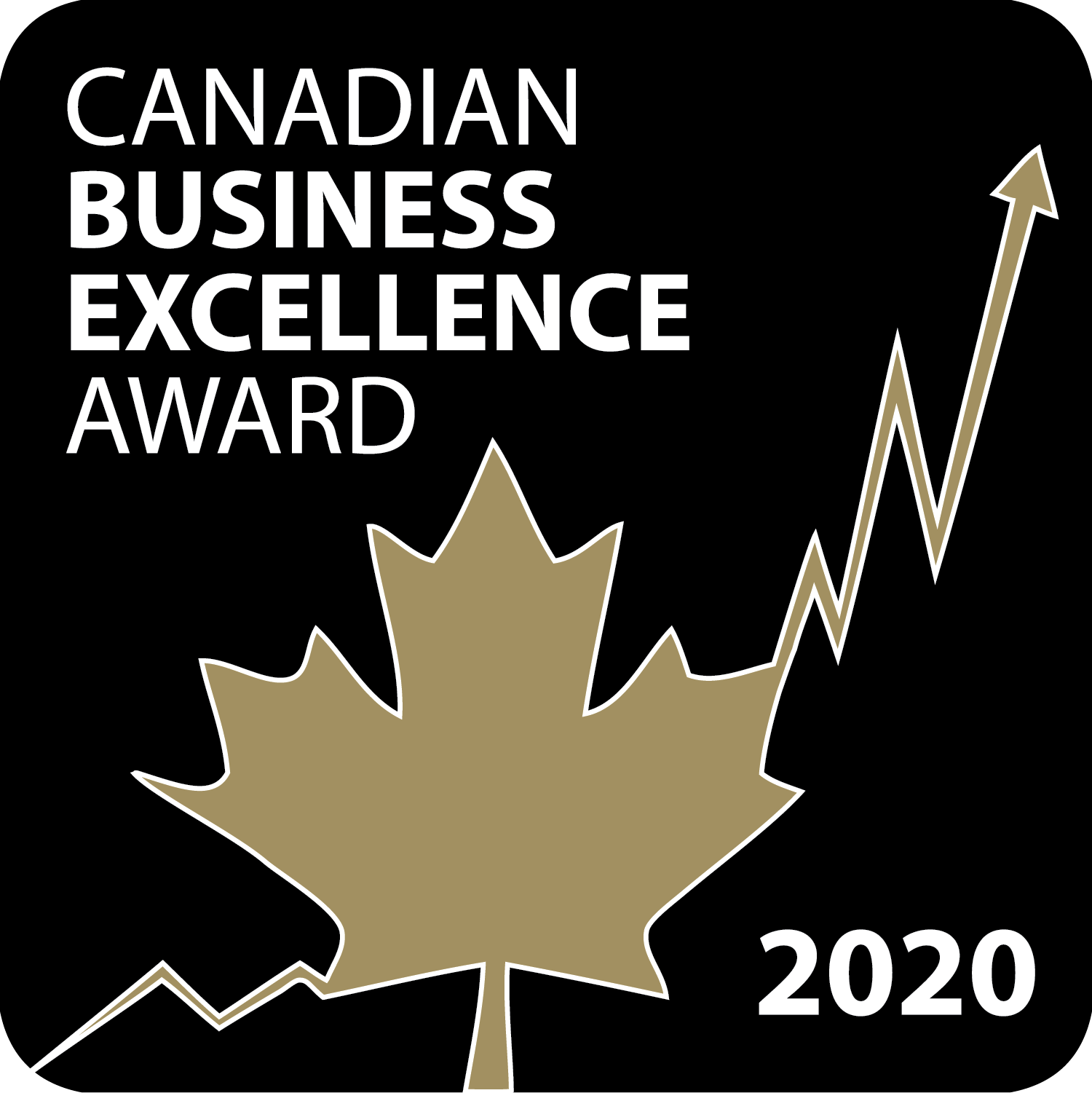 Geotab Award Canadian Business Excellence Award 2020